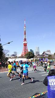 20170226東京マラソン(その13)