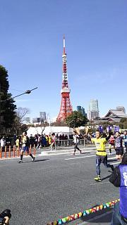 20170226東京マラソン(その16)