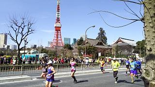 20170226東京マラソン(その26)