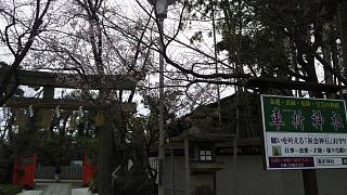 20170331車折神社(その8)