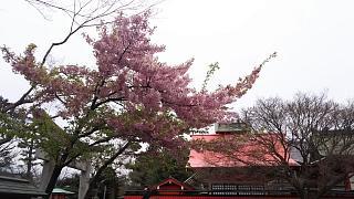 20170331車折神社(その18)