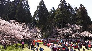 20170402醍醐寺(その21)