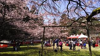 20170402醍醐寺(その26)