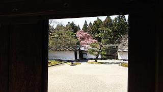 20170402醍醐寺(その51)