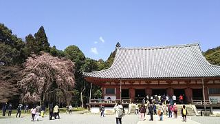 20170402醍醐寺(その87)