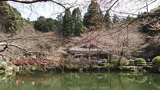 20170402醍醐寺(その104)
