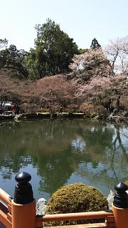 20170402醍醐寺(その109)