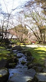 20170402醍醐寺(その111)