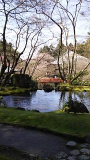 20170402醍醐寺(その113)