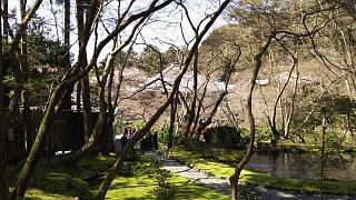 20170402醍醐寺(その115)