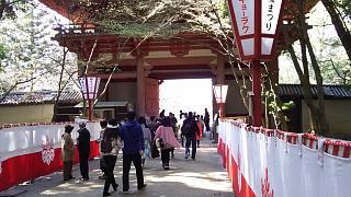20170402醍醐寺(その117)