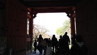 20170402醍醐寺(その119)