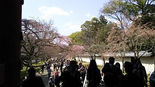 20170402醍醐寺(その120)
