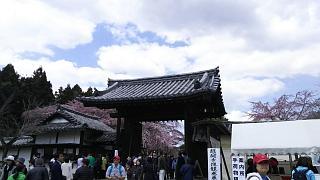 20170402醍醐寺(その176)