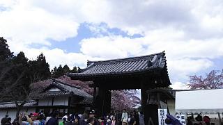20170402醍醐寺(その177)
