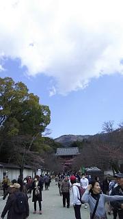 20170402醍醐寺(その178)