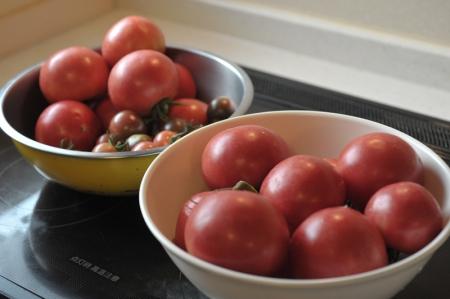 tomato20170709.jpg