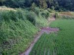 畦畔の決壊