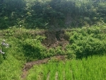 畦畔の崩壊