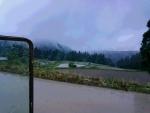 恵みの雨が降ってきた