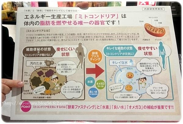 sayomaru20-405.jpg