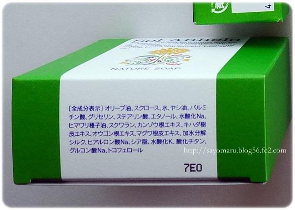 sayomaru20-787.jpg