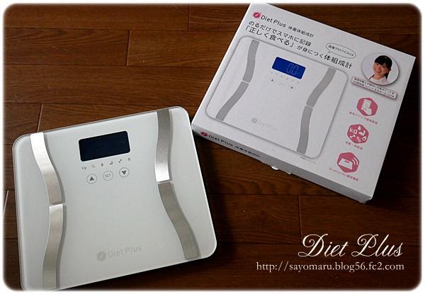 sayomaru21-105.jpg