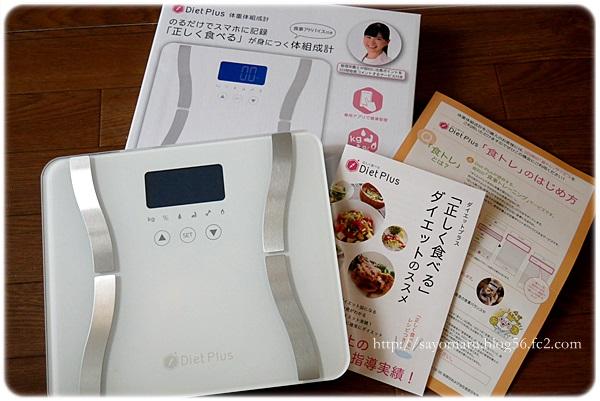 sayomaru21-107.jpg