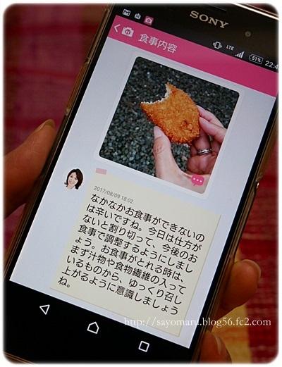 sayomaru21-256.jpg