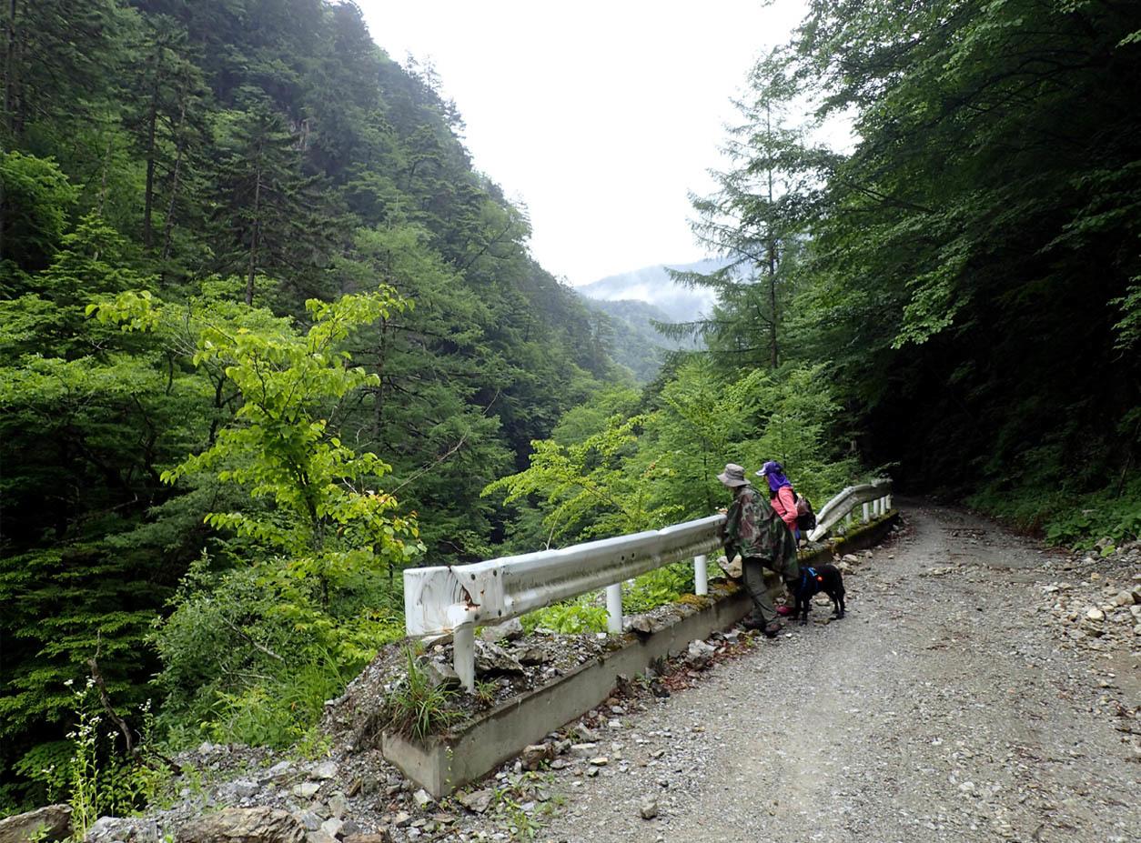 深山幽谷へ(2)