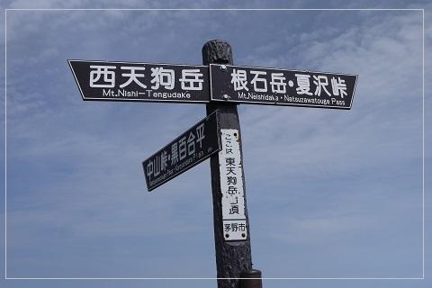 160811tengu48.jpg