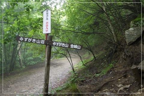 160821mizugaki2.jpg