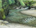 奥名栗の渓流