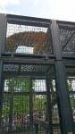 京都市立動物園その6