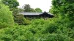 h29年東福寺その4