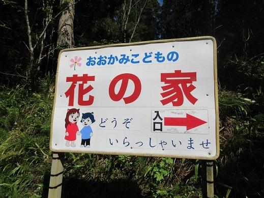 201704おおかみこども (4)