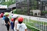 動物園 (21)