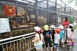 動物園 (27)