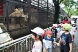 動物園 (30)