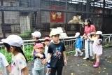 動物園 (31)