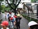 動物園 (51)