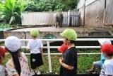 動物園 (54)