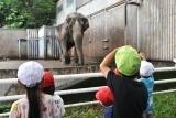 動物園 (57)