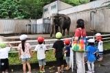 動物園 (59)