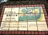 遺跡にごー (31)
