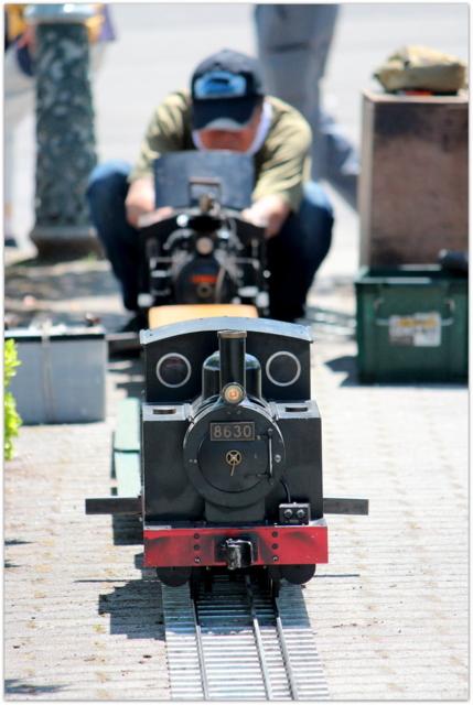 青森県 平川市 猿賀神社 猿賀公園 蓮池 蓮の花 観光 写真 蒸気機関車