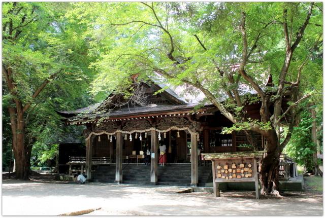 青森県 平川市 猿賀神社 猿賀公園 蓮池 蓮の花 観光 写真