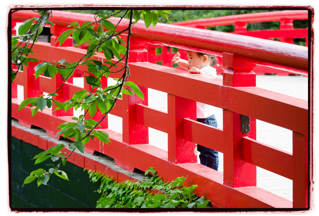 青森県 弘前市 弘前公園 出張 写真 撮影 カメラマン 記念 誕生日 ロケーション キッズ