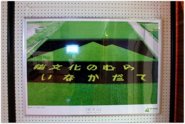 青森県 田舎館村 田んぼアート 石のアート