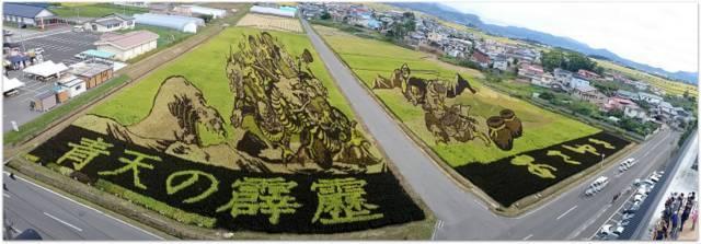 青森県 田舎館村 田んぼアート ヤマタノオロチとスサノオノミコト 観光 写真
